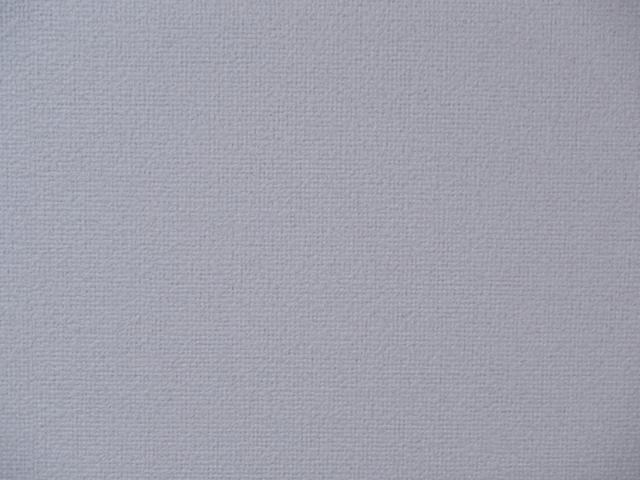 20130627zoom2_f51.jpg