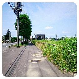 20130730_1.jpg