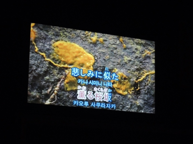 ほしいカラオケ (6)