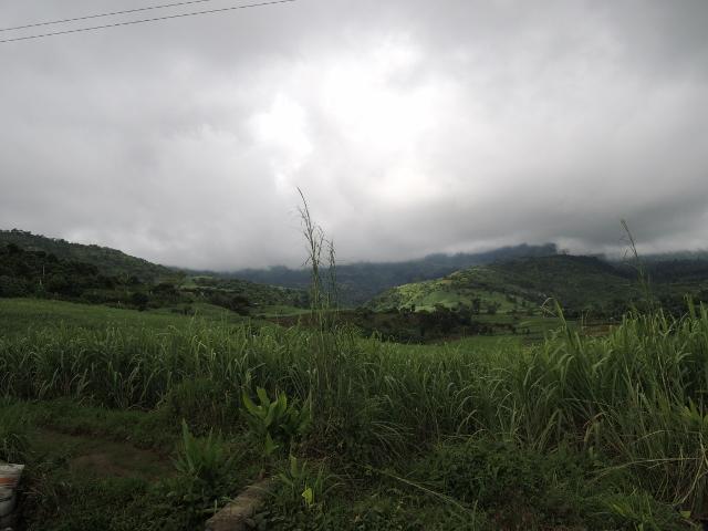 tinago (5)