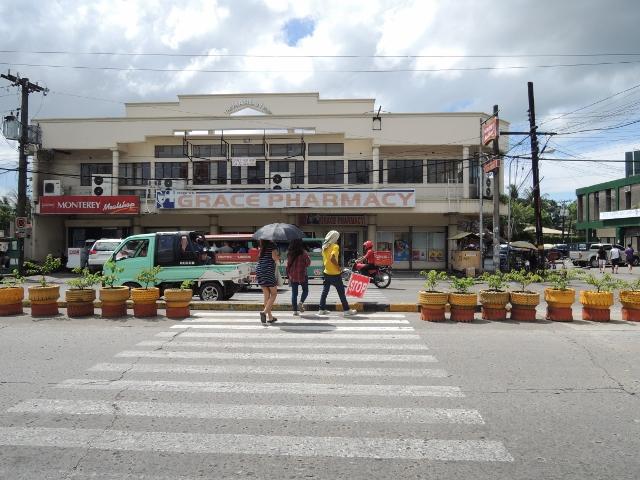 横断歩道 (2)