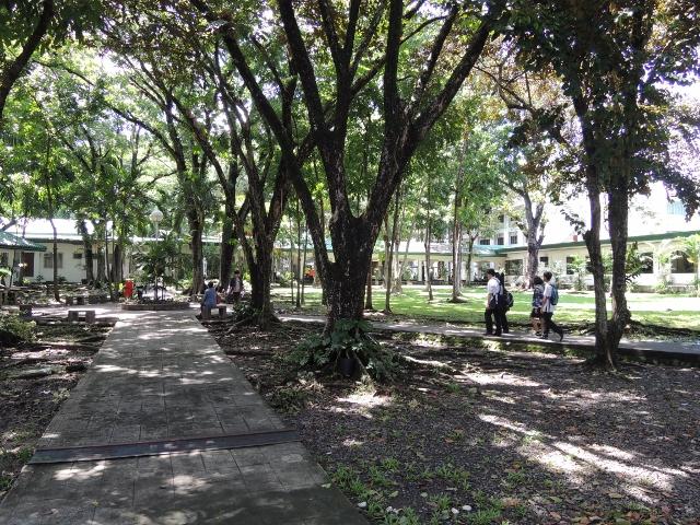 キャンパス2014 (52)