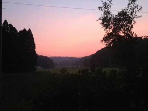 ピンクが綺麗な夕焼け空