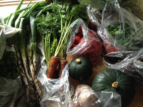 パワー漲る野菜たち!