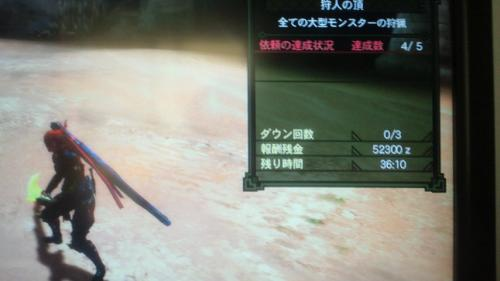 NEC_0315.jpg