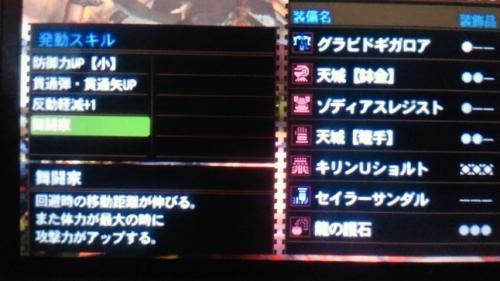 NEC_0397.jpg
