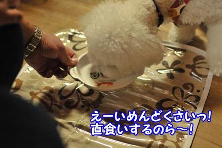 2013_09170466 (2)