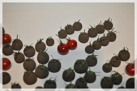 トマト主役