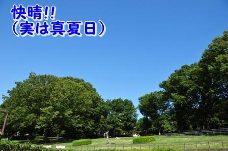 2013_08310011.jpg