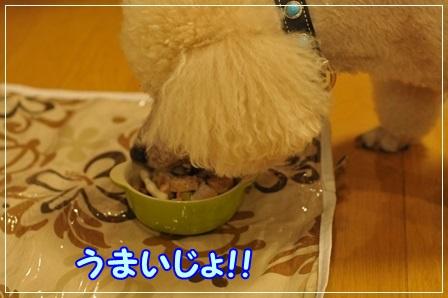 コテ食べる