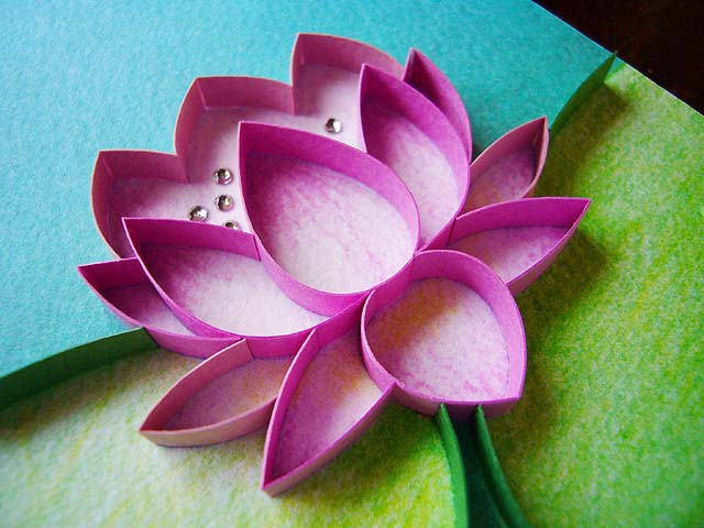 Water Lily(アップ)
