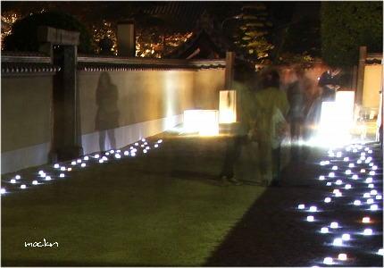 園路の灯火