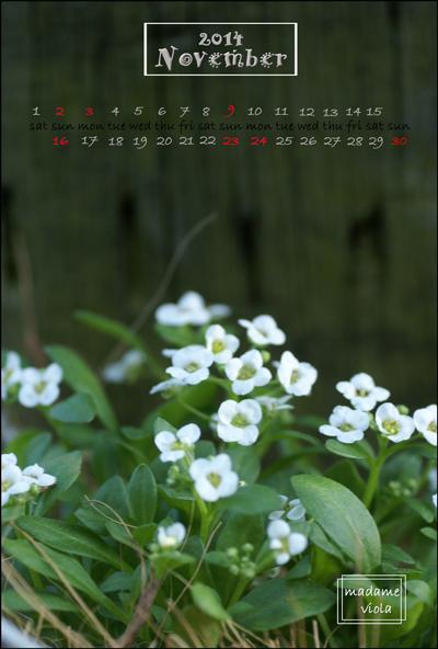 11月KGカレンダーweb用