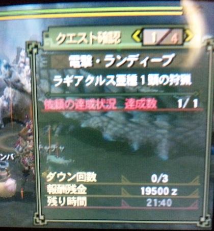pachi_rand9.jpg