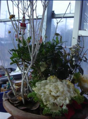 鉢植えのサンタ.JPG