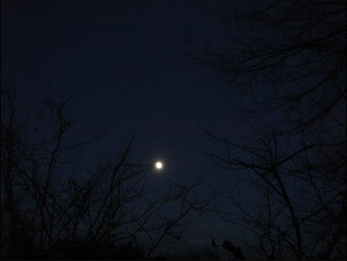 帰着の月.JPG