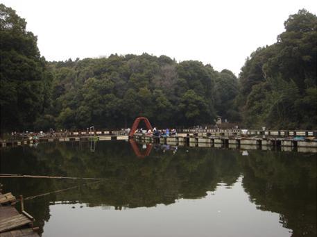林に囲まれた池.JPG