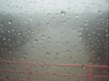 雨の天竜川.JPG