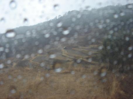 雨の棚田.JPG