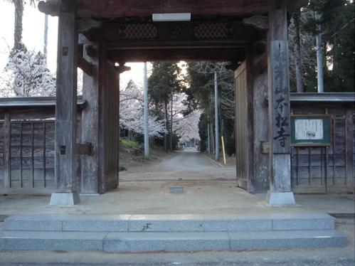 本松寺の桜.JPG