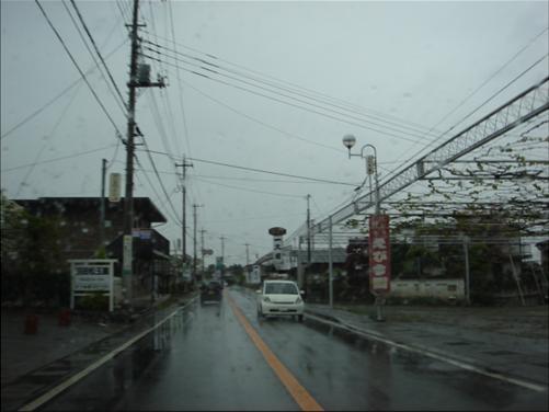 ぶどう園.JPG