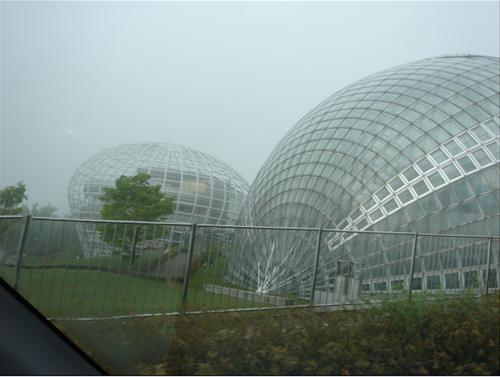 熱帯果樹園.JPG