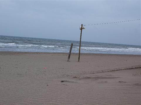 寂しい海.JPG