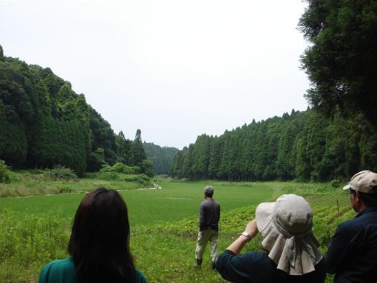 山武の里山.JPG