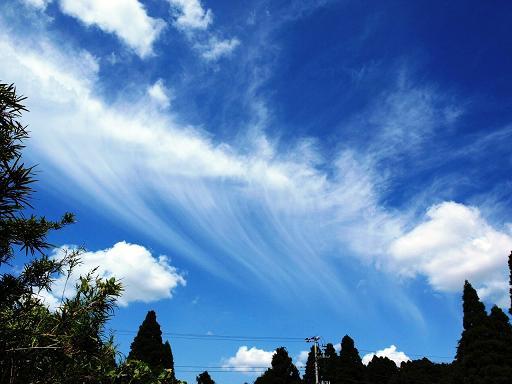 雲が白いな.JPG