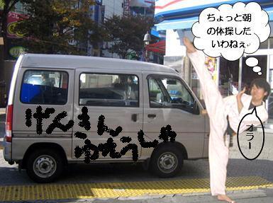 車と空手jpg.jpg