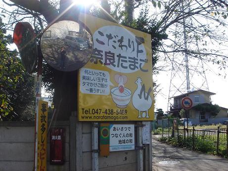 奈良養鶏園4.JPG