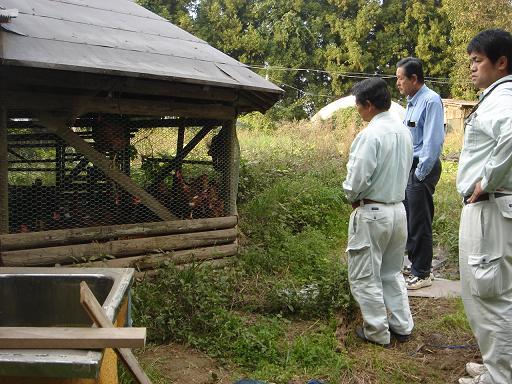 中谷さんの鶏舎.JPG