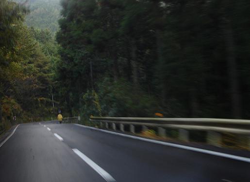 森の中の遍路.JPG