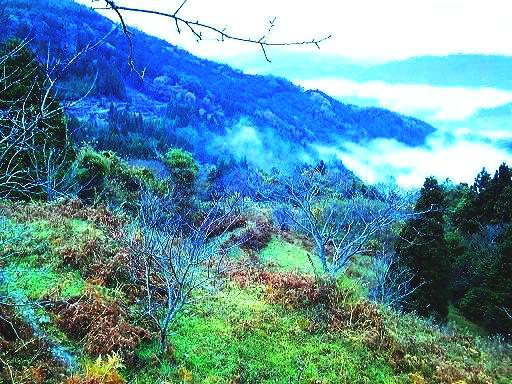 高原の山々.JPG