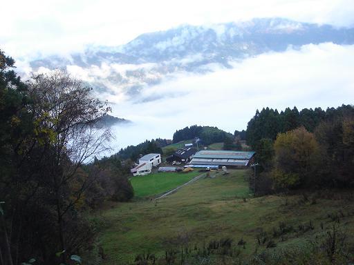 高原の農場.JPG