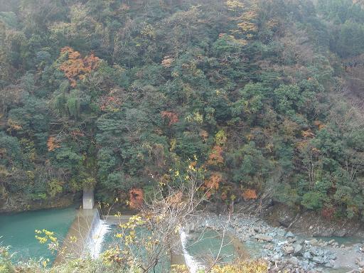吉野川支流と紅葉.JPG