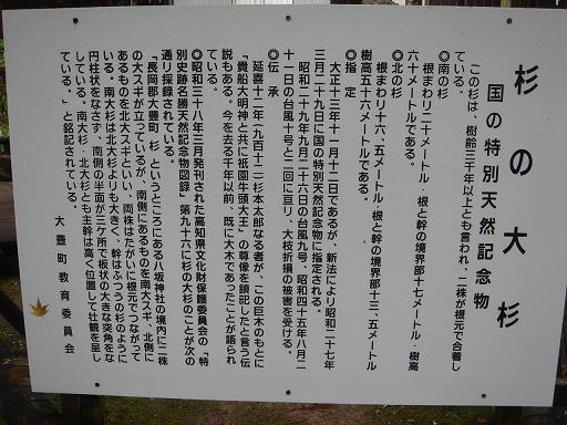 杉の大杉云われ.JPG
