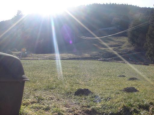 美しい農場と明るい日射し.JPG