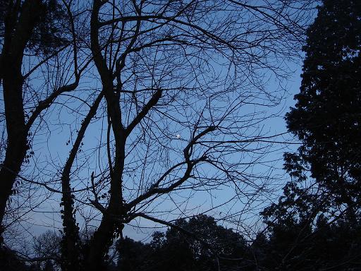西の空に残光の月が.JPG