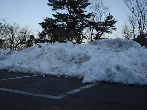 この雪・・・・・.JPG