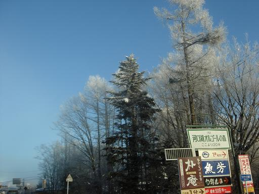 樹氷の林の道を抜けて・・・.JPG