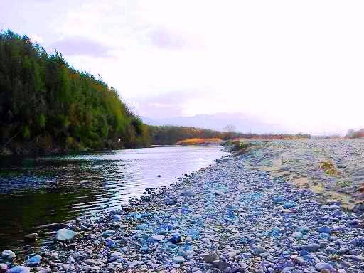 吉野川の河原で.JPG