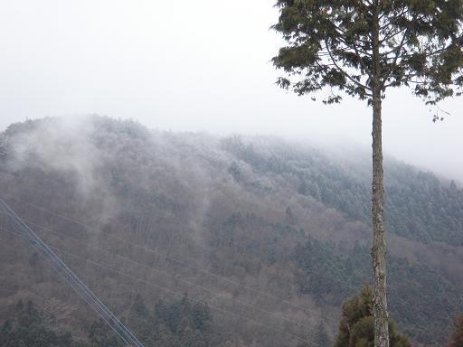 梶ヶ森に霧氷が.JPG