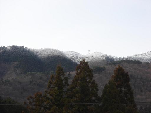 この日も霧氷.JPG