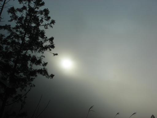 霧の中の太陽.JPG
