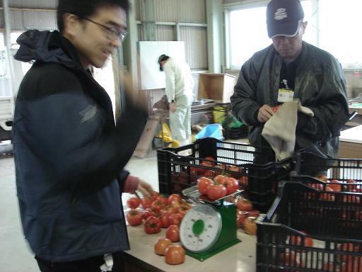 トマト袋詰め.JPG