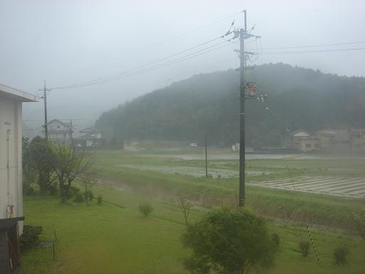 ど雨.JPG