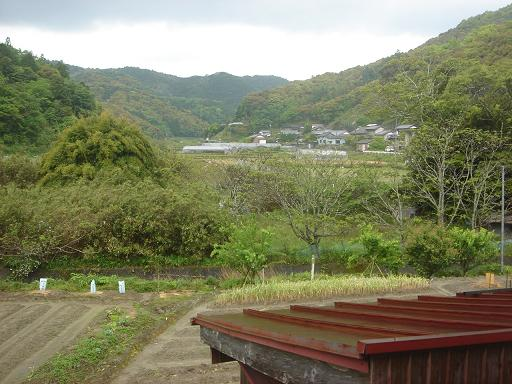 北郷の眺め.JPG