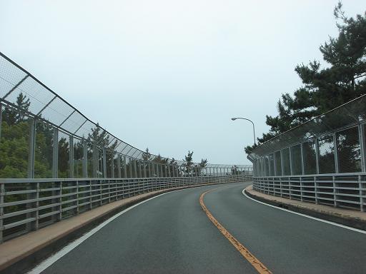 橋を登って行く.JPG
