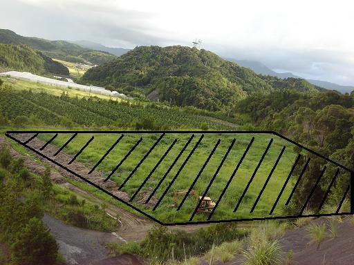 ホームベース型の土地.JPG